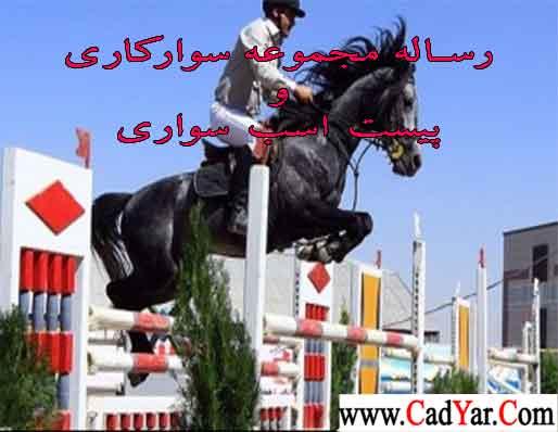اسب-سواری